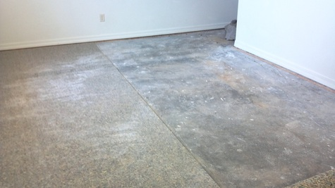 cat Urine Concrete Floor Flooring 28 Images How To